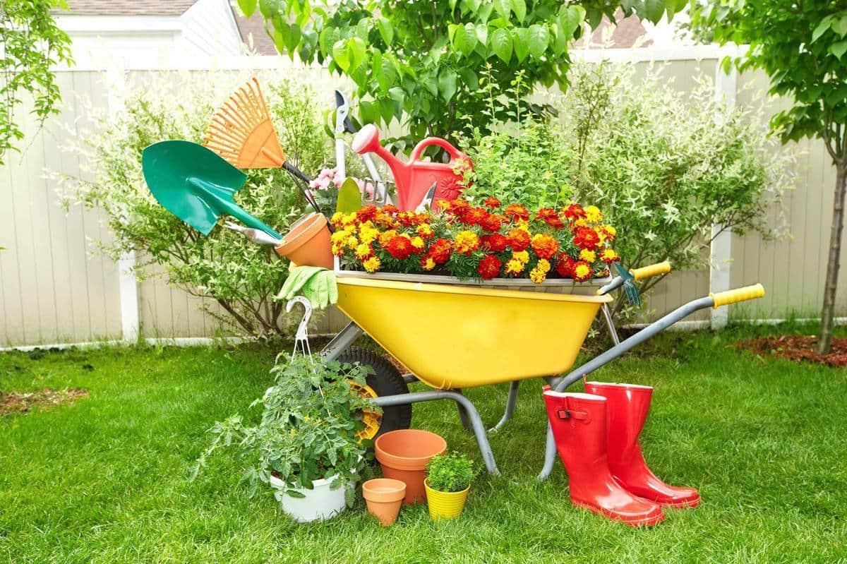 Даже обычную садовую тачку можно превратить в настоящий арт-объект
