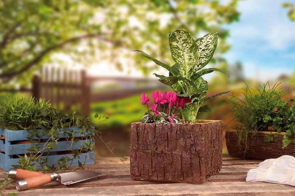 Красивый цветочный горшок сделанный из коры дерева