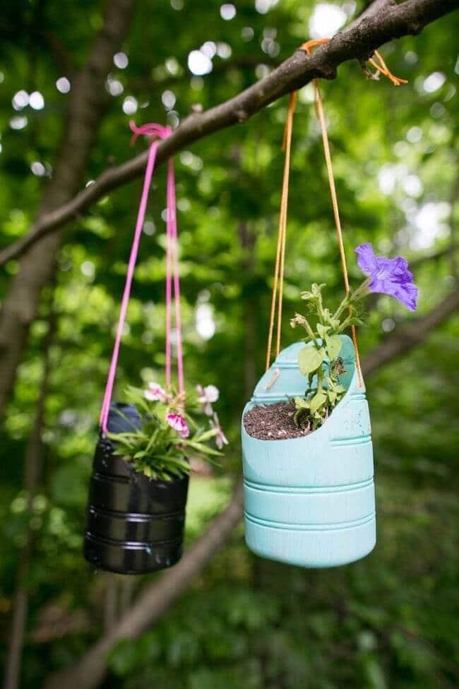 5 минут работы и ваш сад заиграет новыми красками