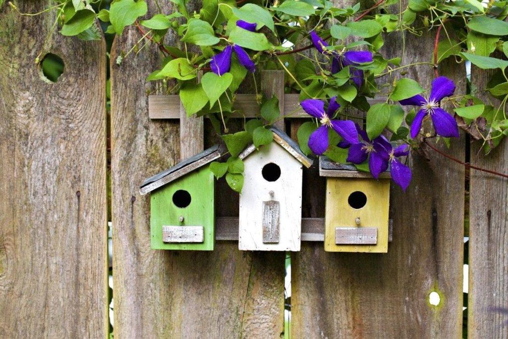 Красивые скворечники в виде небольших домиков, сделанные из второсортных пиломатериалов, станут прекрасным жилищем для пернатых друзей