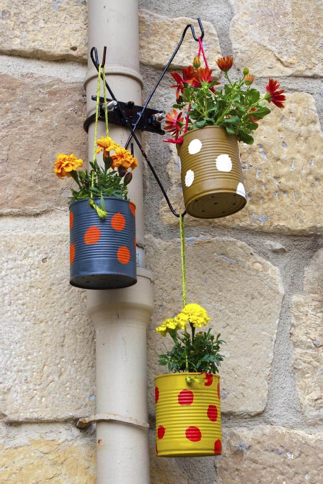 Декор с добавлением живых растений