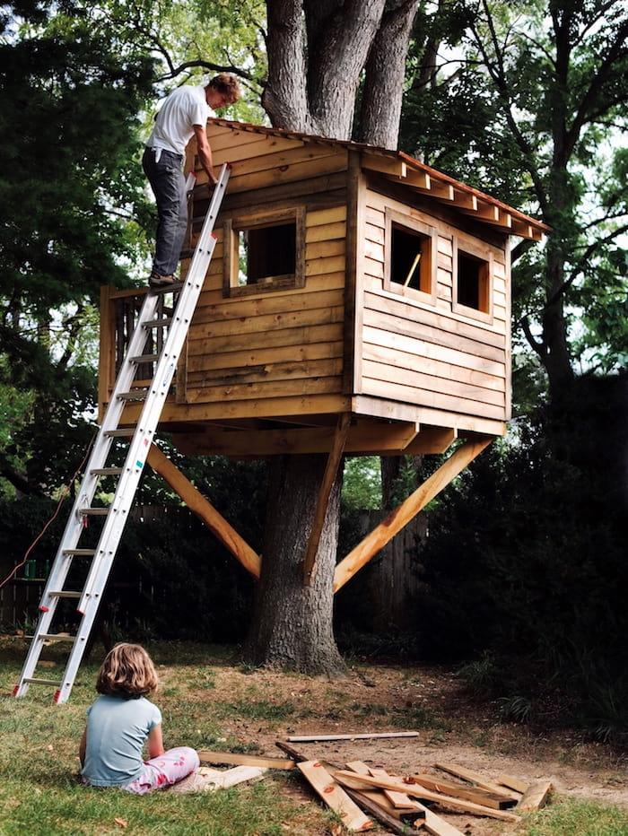 Строительство домика на дереве под пристальным присмотром своего будущего хозяина