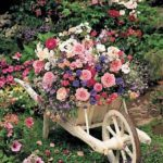 тачка с цветами