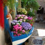 лодка с разными цветами