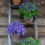 горшки с цветами на лестнице
