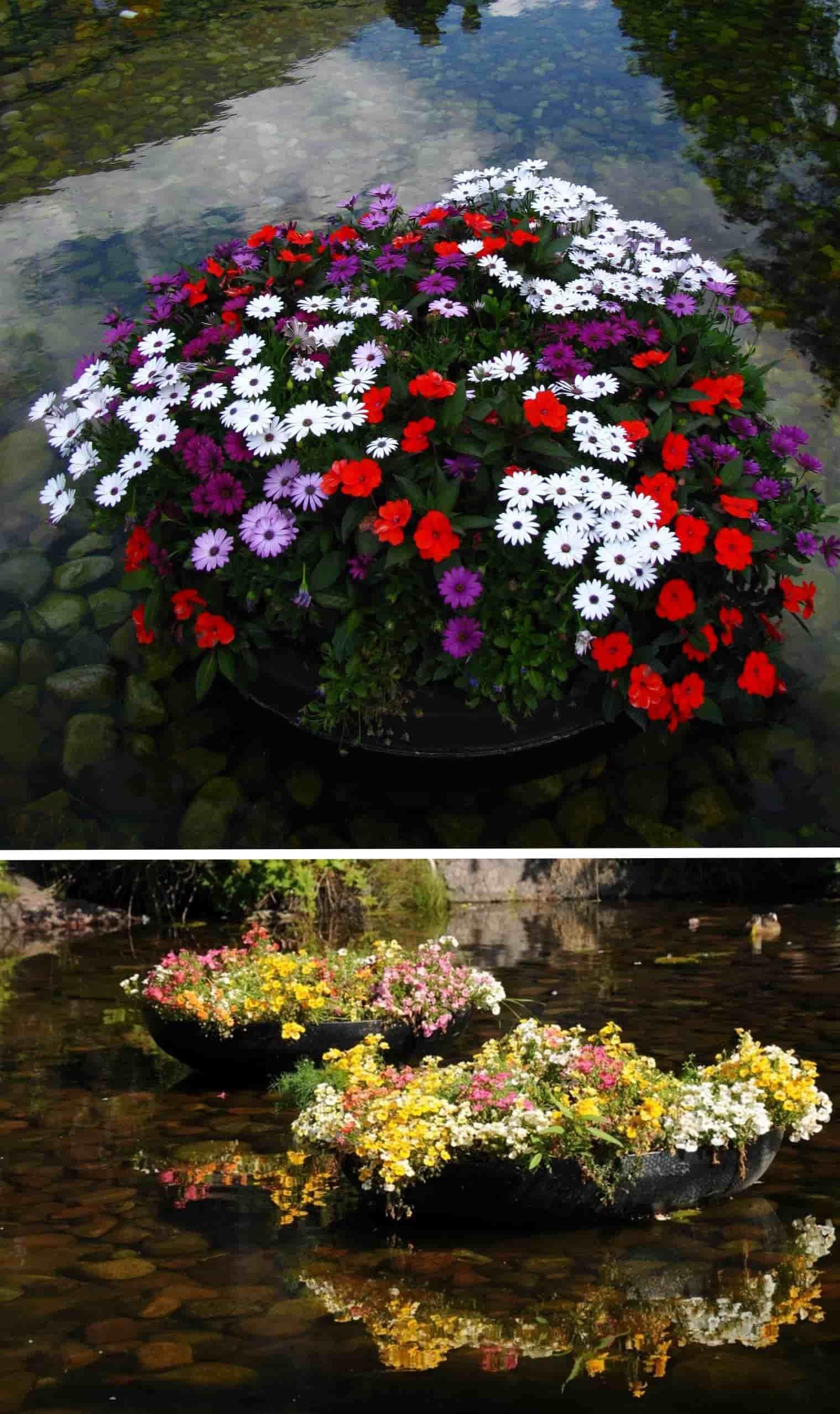 Цветник на воде - это оригинально и красиво