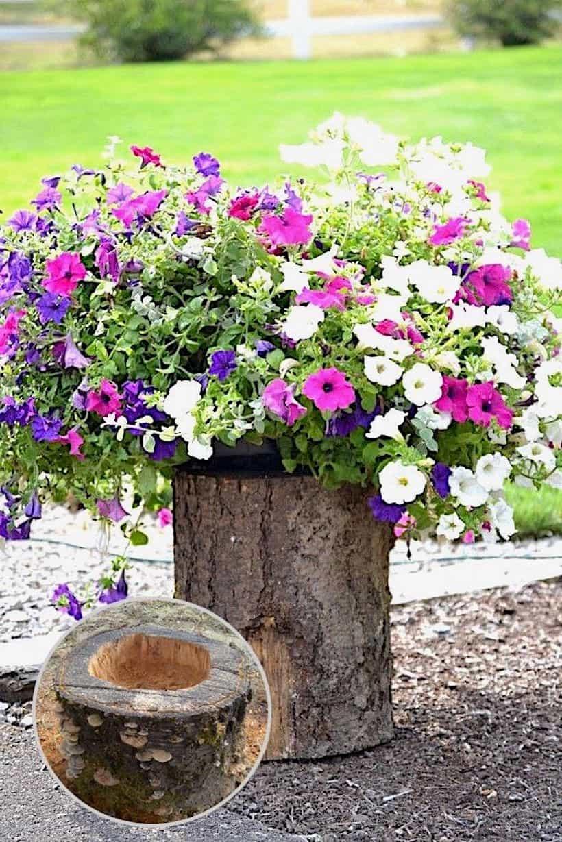 Немного столярного мастерства и обычный пень станет очаровательным украшением для вашего сада