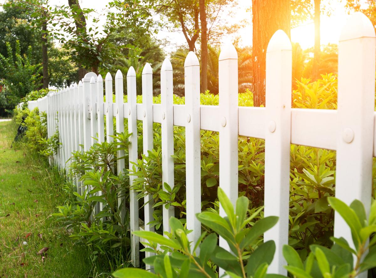 Белоснежный забор из деревянного штакетника