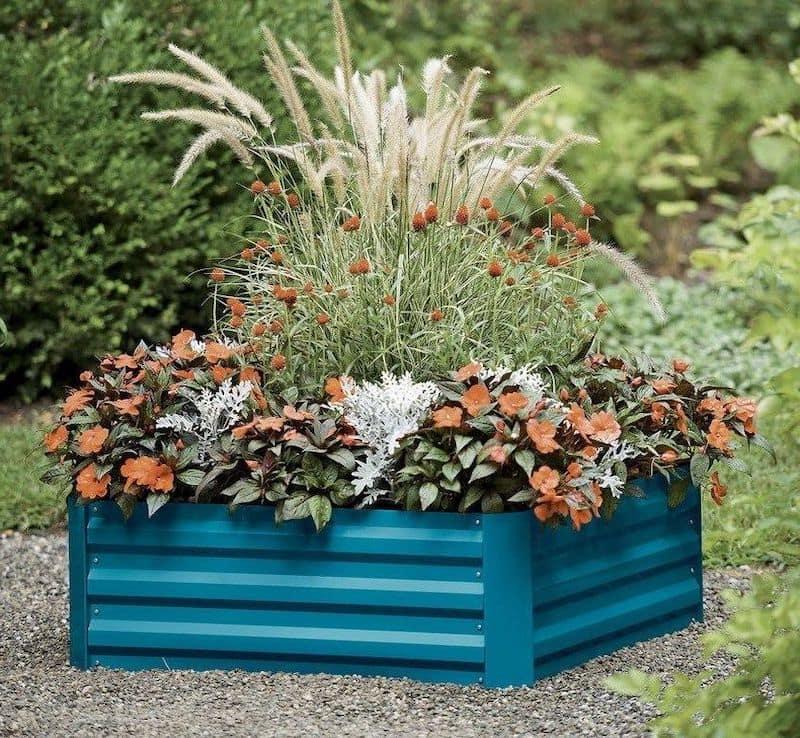 Металлическое ограждение способствует улучшению прогрева почвы, поэтому для такой клумбы следует подбирать растения, которые себя комфортно чувствуют в тепле