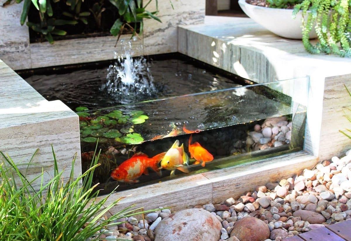 Миниатюрный пруд для рыб