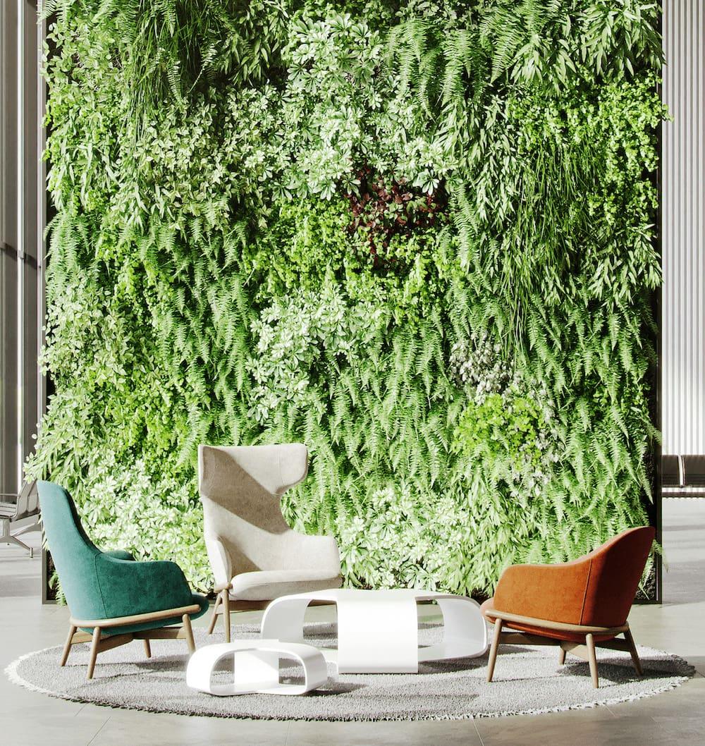 комнатные растения в интерьере фото 22