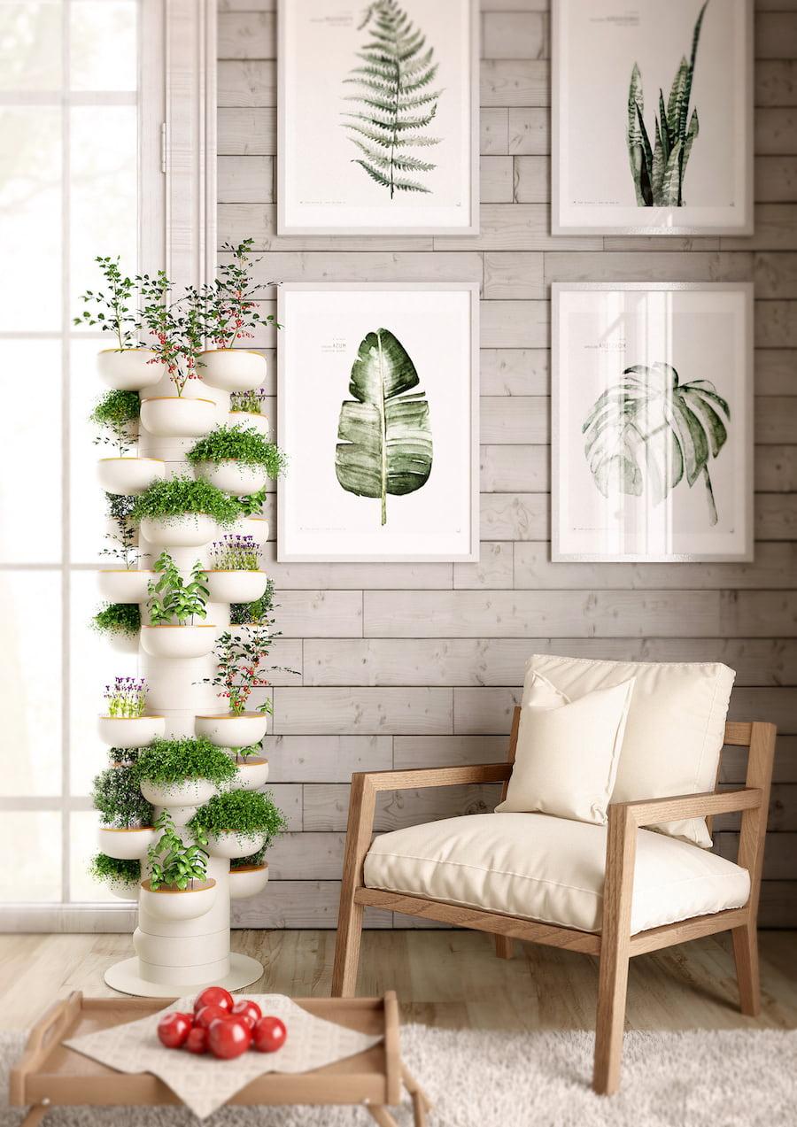 комнатные растения в интерьере фото 19