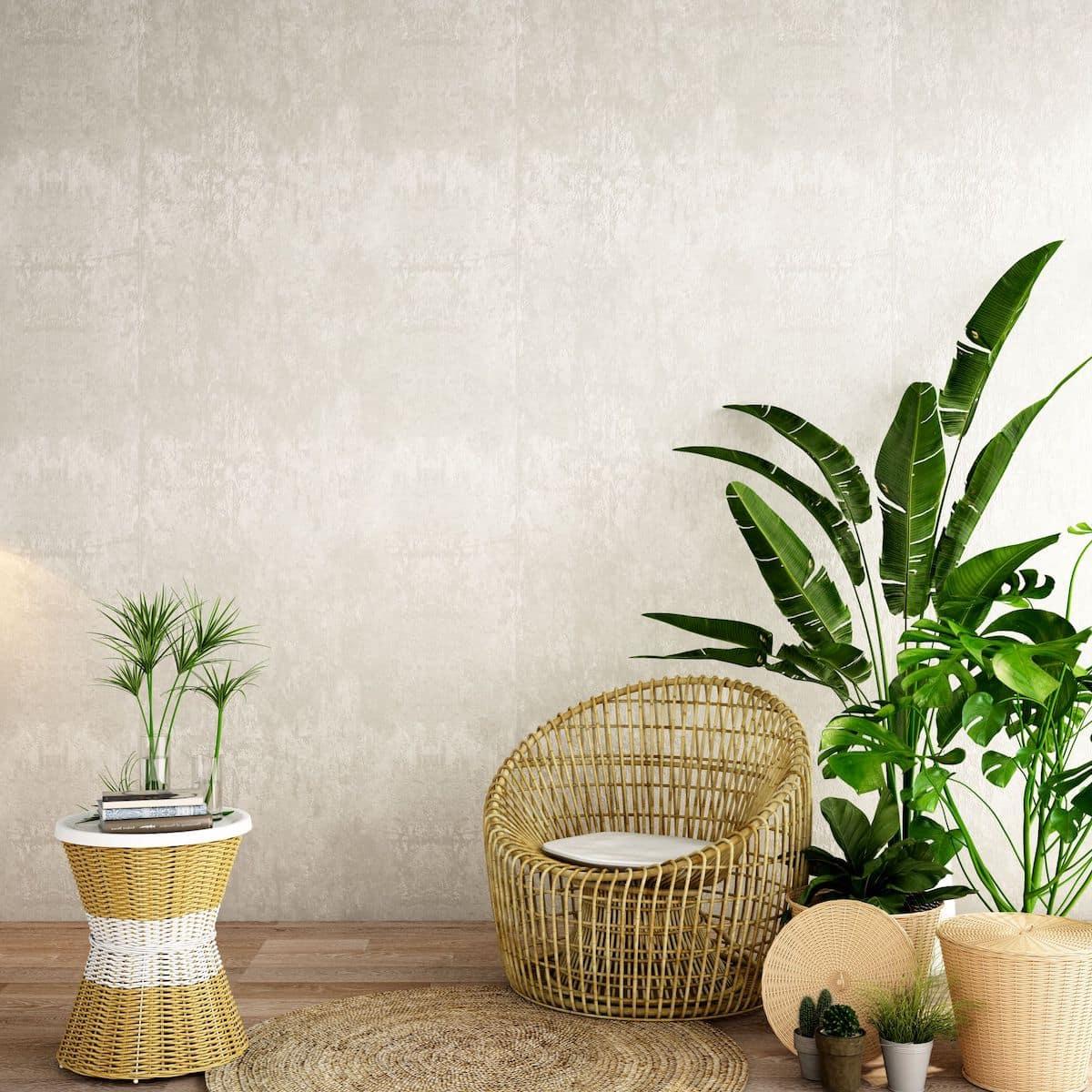 комнатные растения в интерьере фото 47