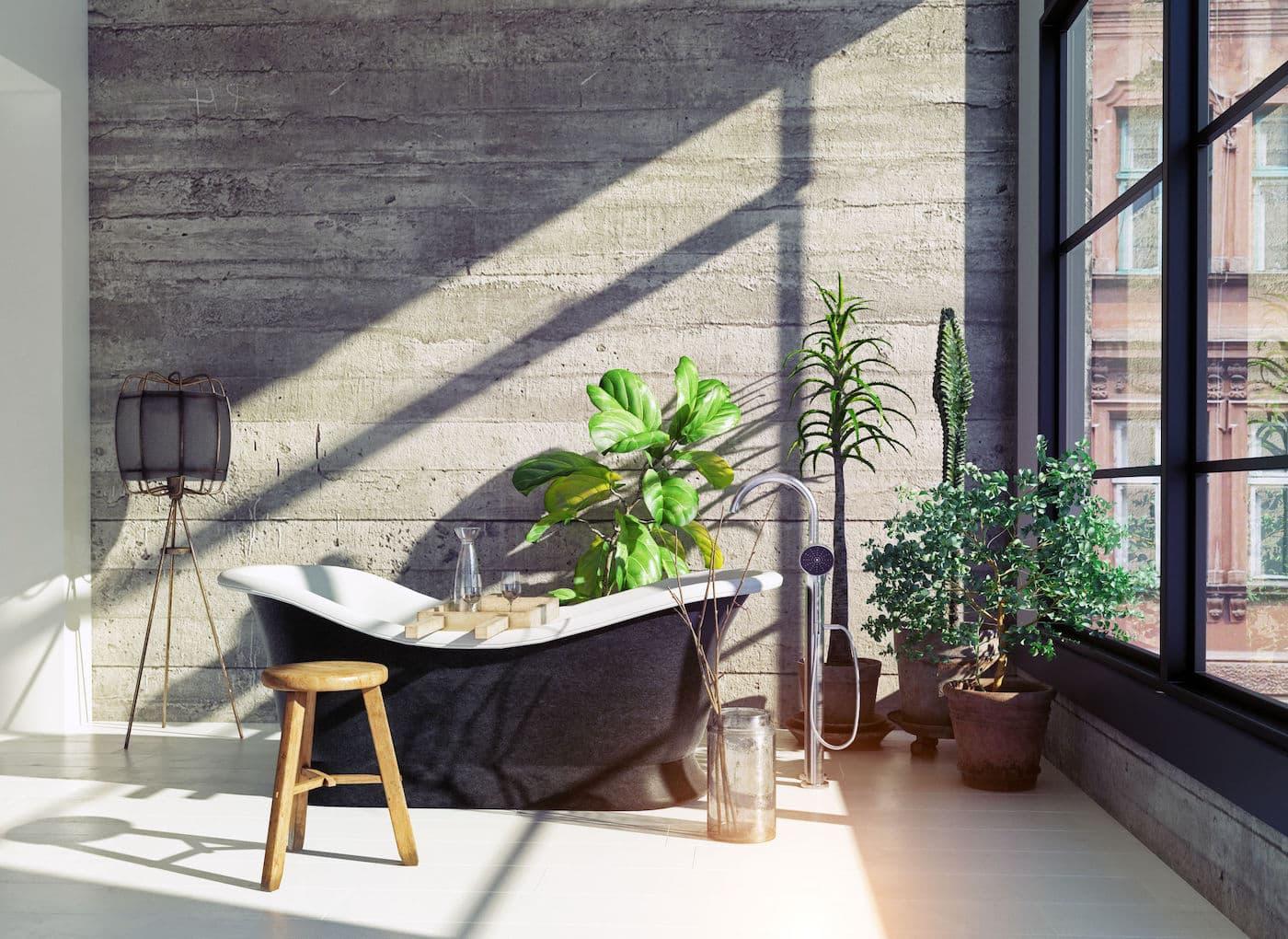 комнатные растения в интерьере фото 43