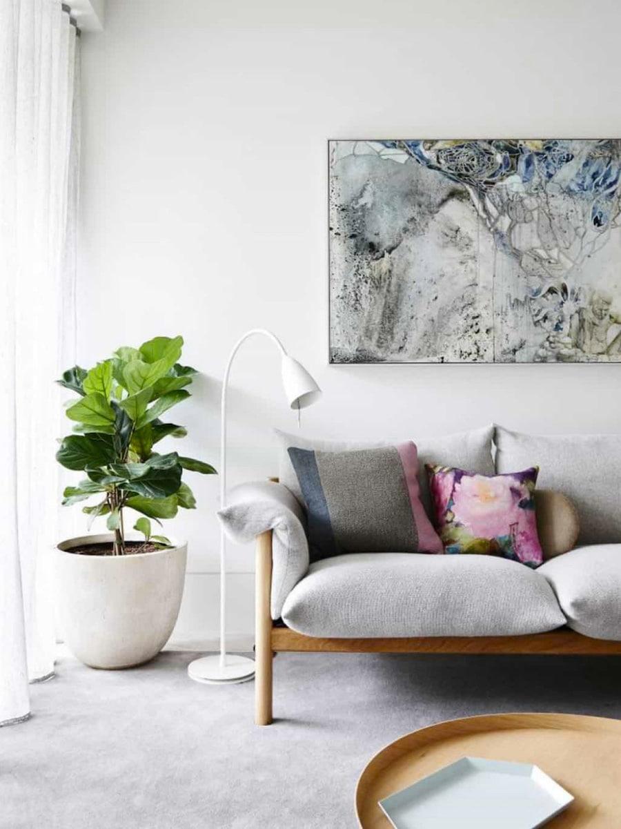 комнатные растения в интерьере фото 30