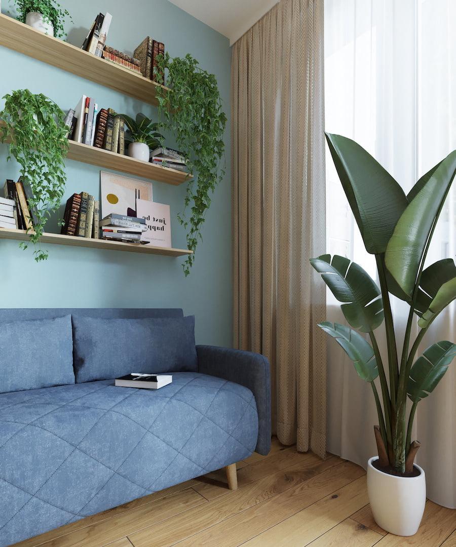 комнатные растения в интерьере фото 49