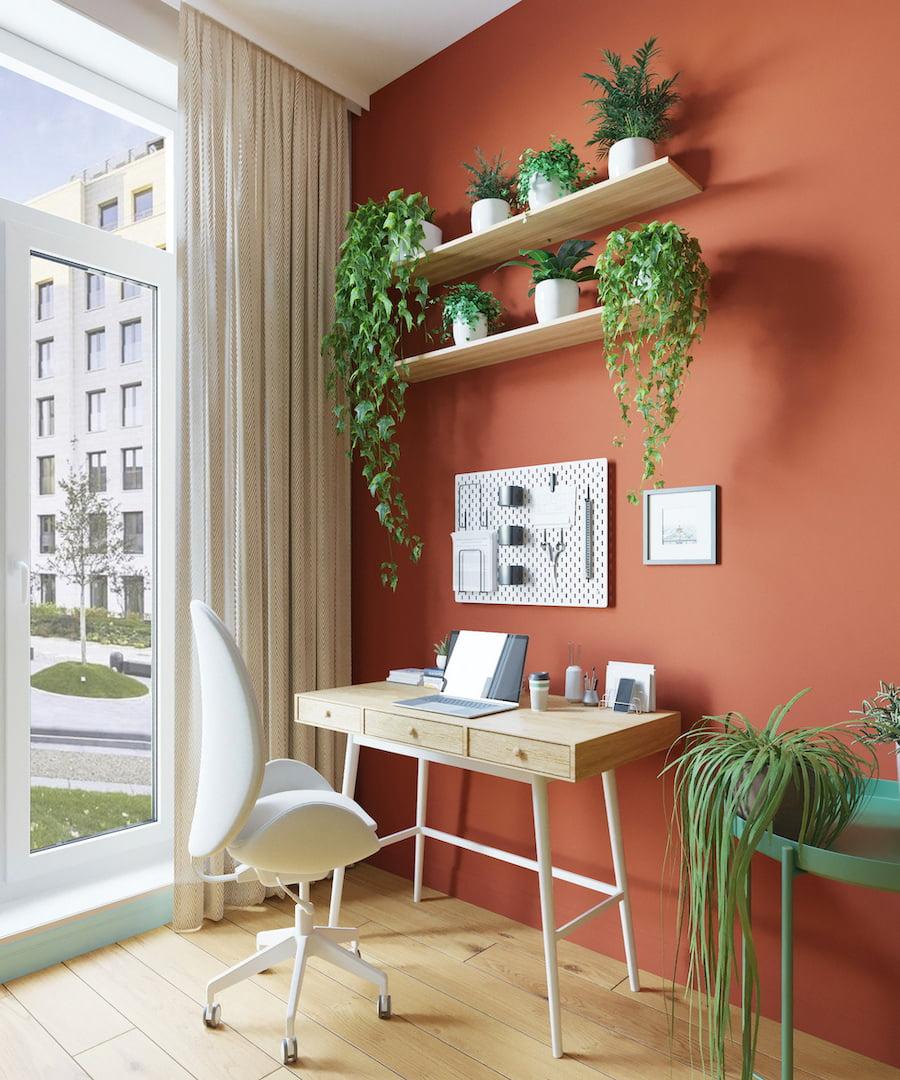 комнатные растения в интерьере фото 4