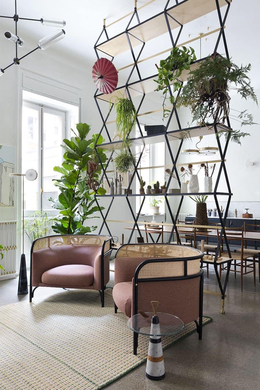 комнатные растения в интерьере фото 25