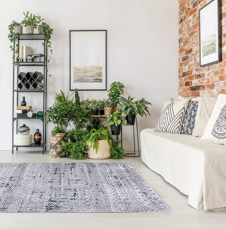 комнатные растения в интерьере фото 32