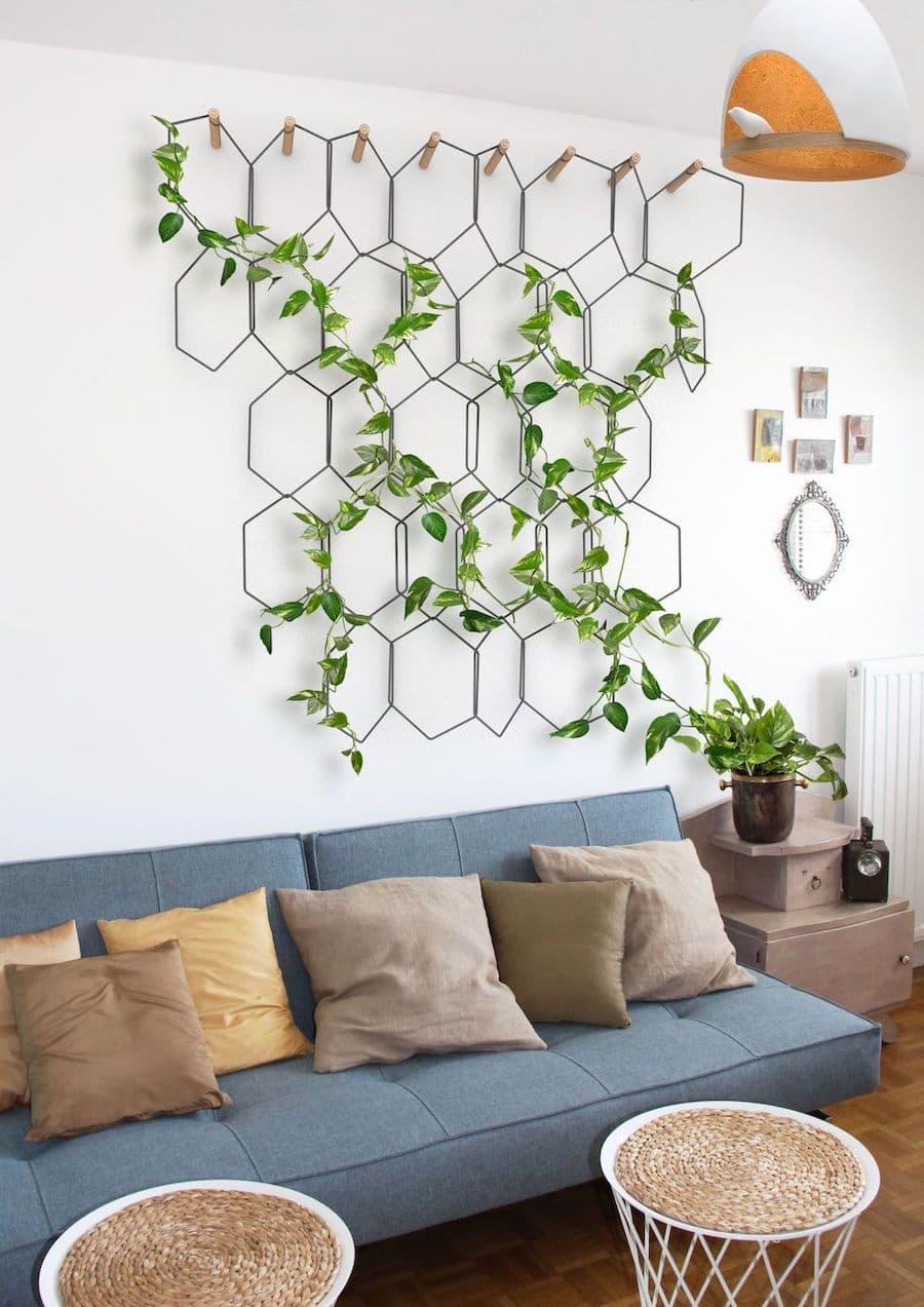 комнатные растения в интерьере фото 33