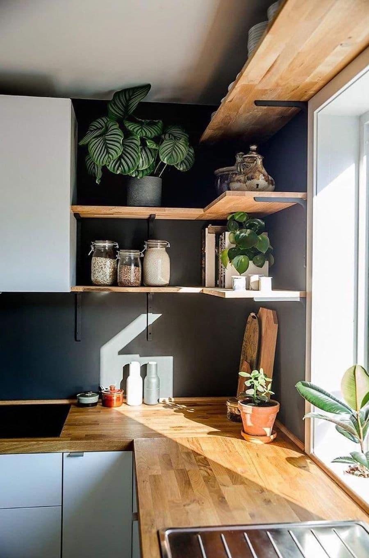 комнатные растения в интерьере фото 35