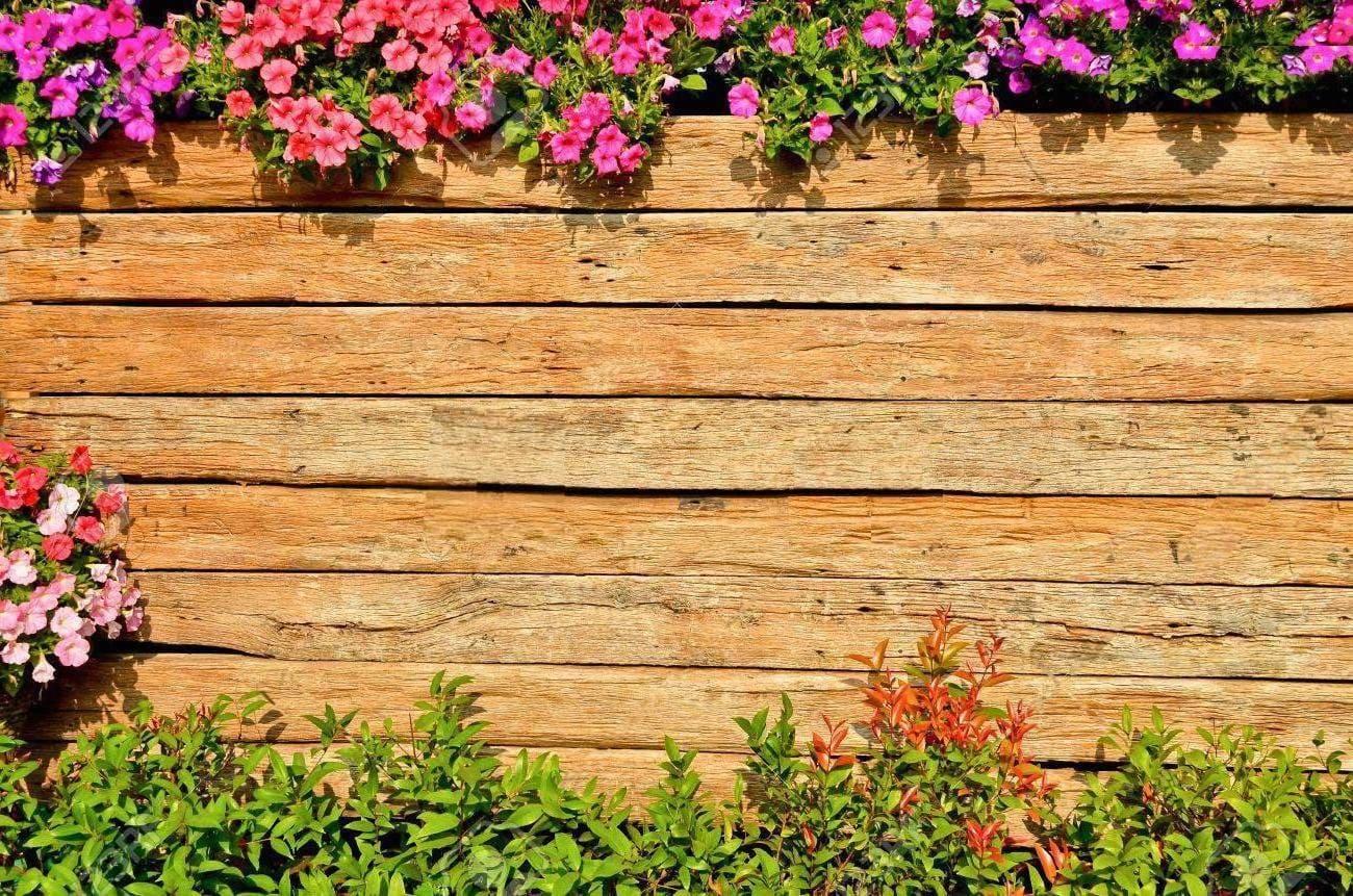 красивый деревянный забор фото 27