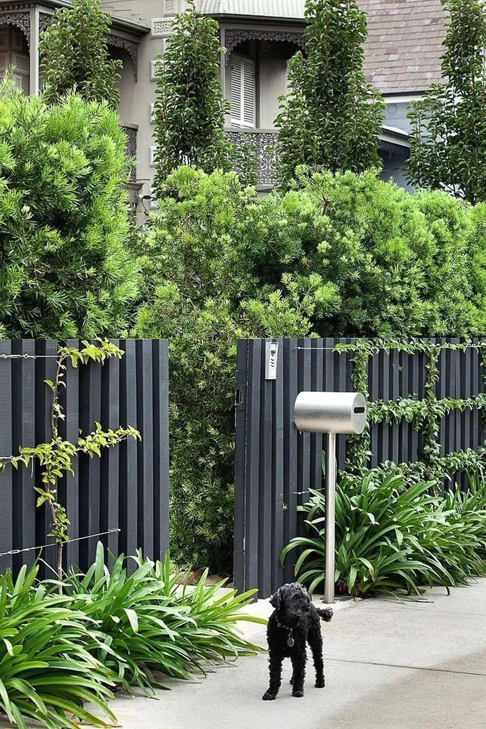 красивый деревянный забор фото 3