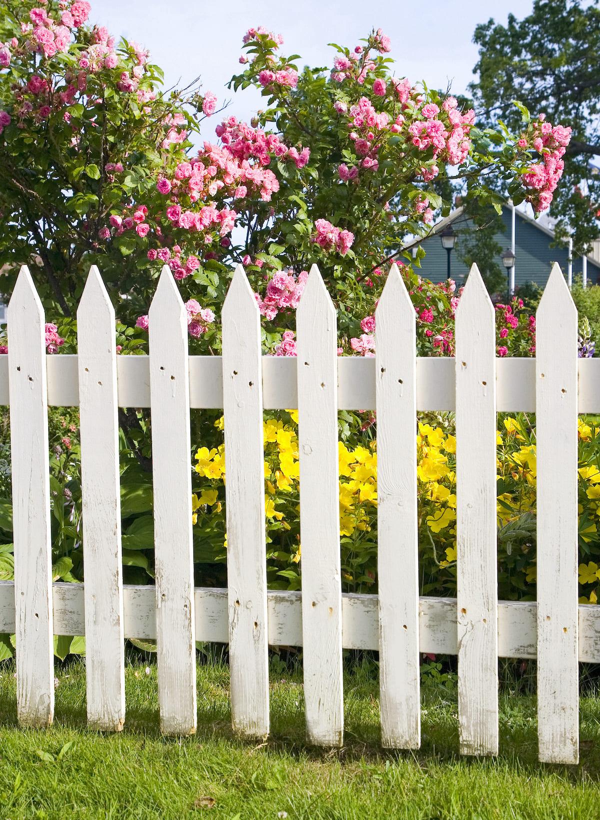 красивый деревянный забор фото 8