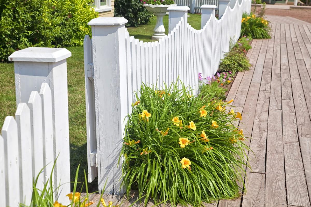 красивый деревянный забор фото 51