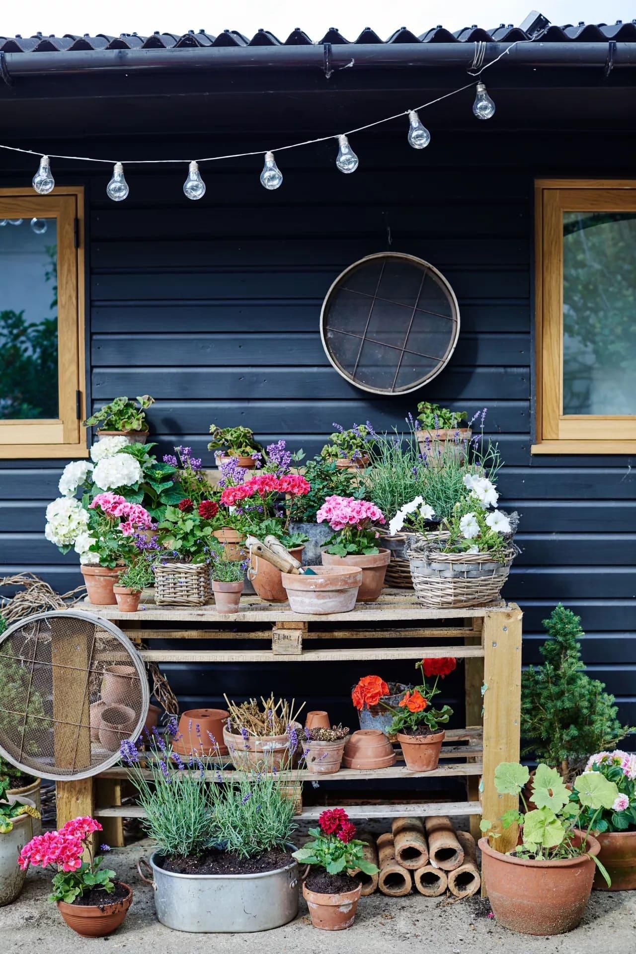 красивый сад частного дома фото 72
