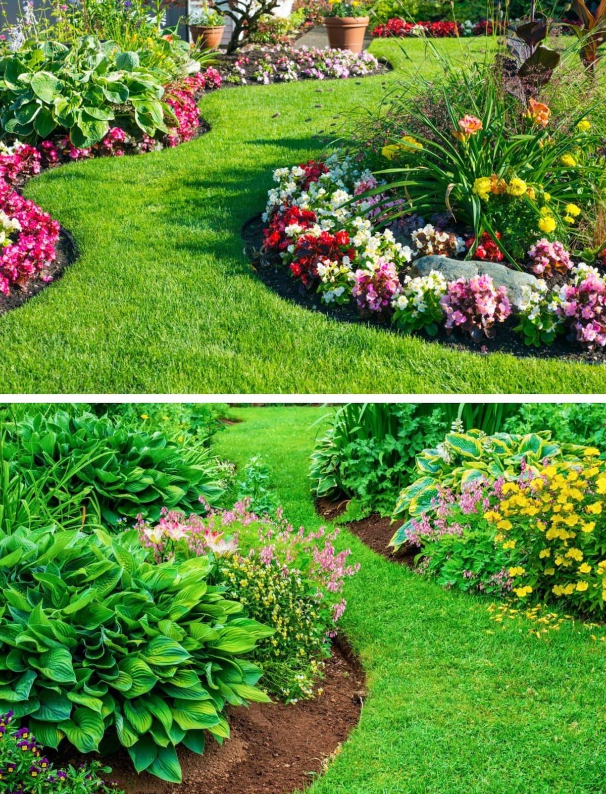 красивый сад частного дома фото 6
