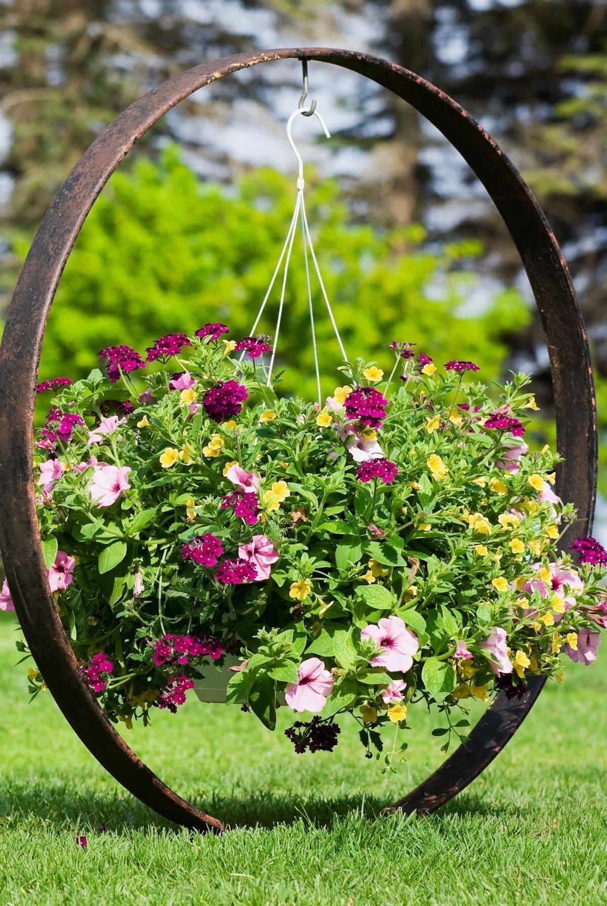 красивый сад частного дома фото 71