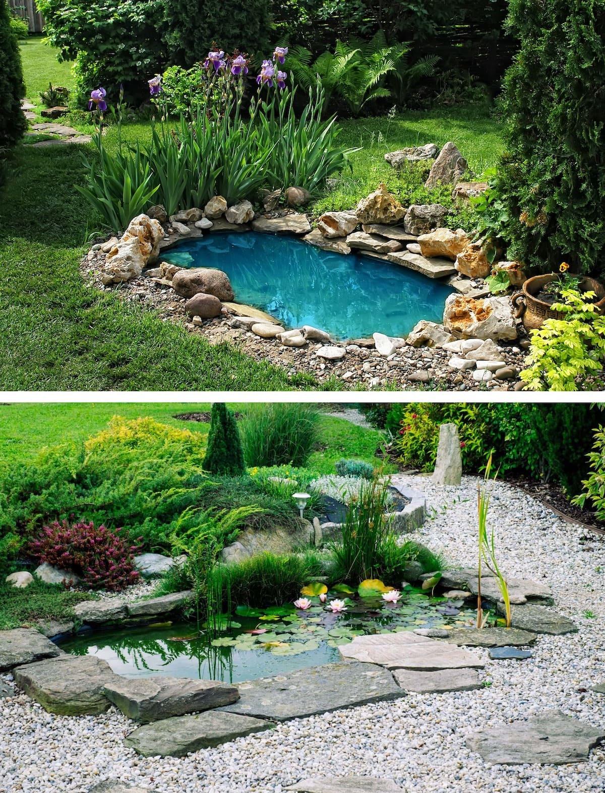 красивый сад частного дома фото 17