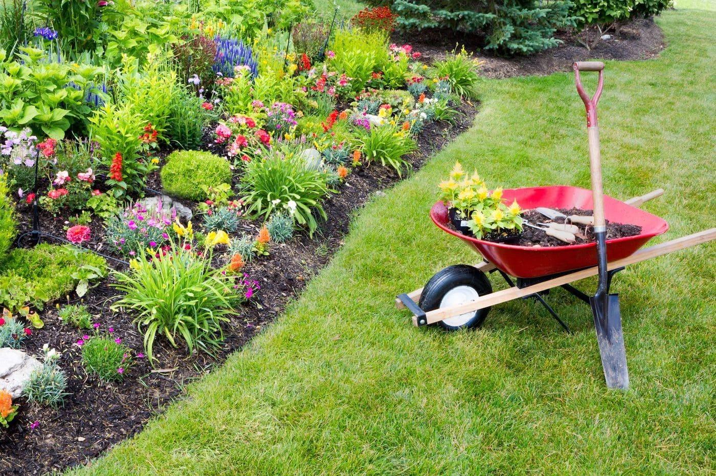 красивый сад частного дома фото 25