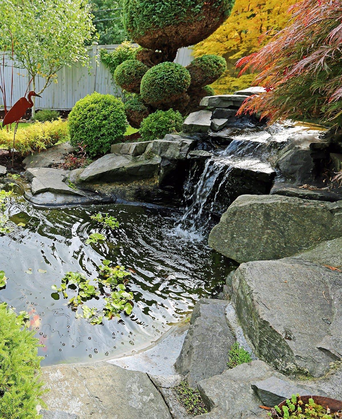 красивый сад частного дома фото 26