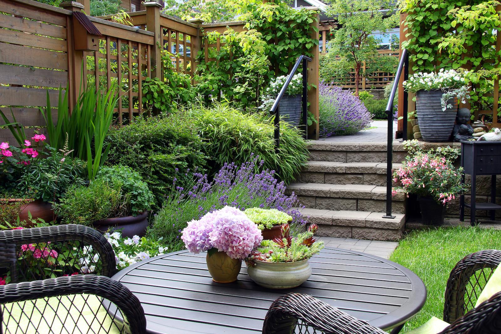 красивый сад частного дома фото 76