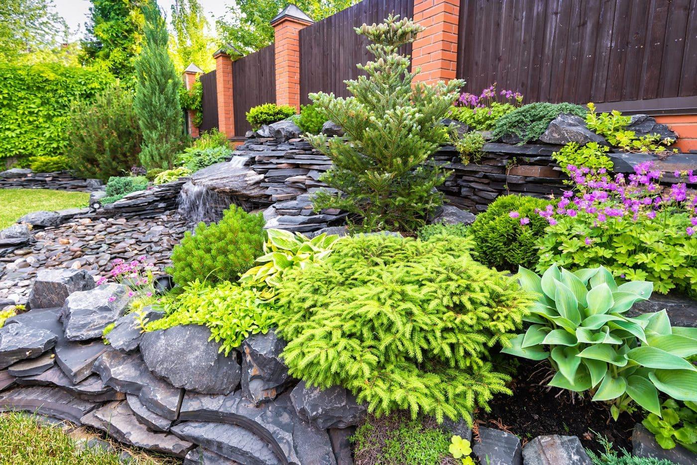 красивый сад частного дома фото 78